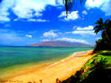 Best Maui Beach Wedding Site